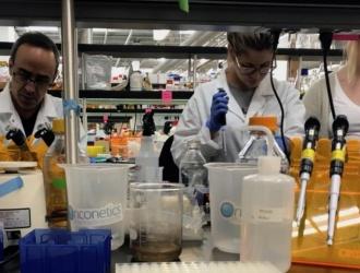 Científicos del CONICET crearon un método que detecta el Coronavirus en una hora