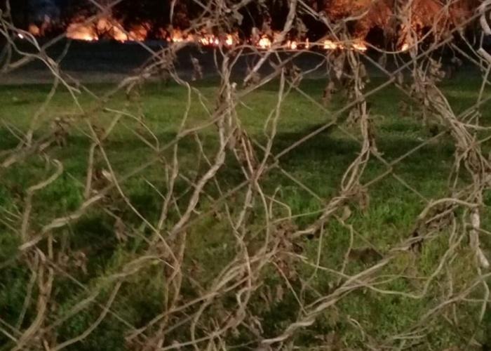 La ANAC pide se investigue el incendio en el Palomar
